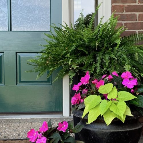 A New Green Front Door Color — SW Billiard Green